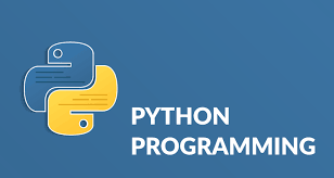 Why Do You Use Python, And How Should You Do It?